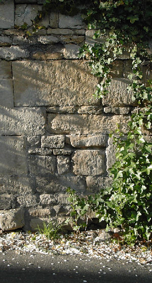 A small part of a magnificent stone wall Freshford Somerset